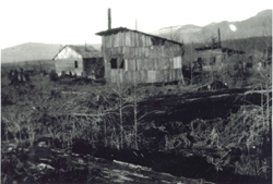 (Royal Stump Ranch 1927)
